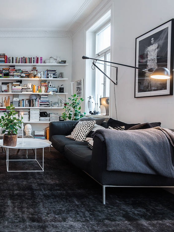 homLotta-Agatons-apartment-sofa-and-great-shelves